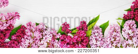 Web Banner Spring Lilac Flowers On White Wooden Background. Top View, Flat Lay, Copy Spase