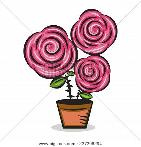 Pinkrose Flower With Green Leaves In Flower Pot Closeup Isolated On White Background. Hand Painting