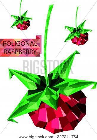 Poligonal Vector Raspberry Image With Place For Text