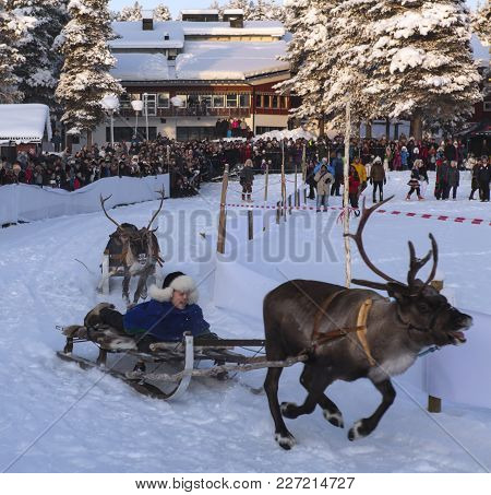 Jokkmokk, Sweden On February 03. View Of A Reindeer Race, Sledge Behind And Spectators On February 0