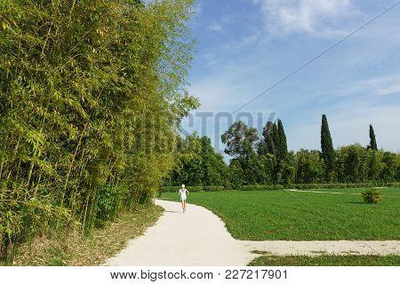 Russia, Sochi, Krasnodar Region-june 06.2017: The Girl Runs Along The Path Of The City Park With A T