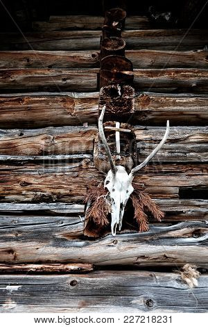 A Deer Head Hunting Trophy Hanging On A Alpine Pasture Stable Together With A Cross And Dried Pines