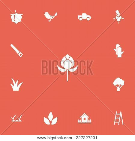 Set Of 13 Editable Gardening Icons. Includes Symbols Such As Hacksaw, Scarecrow, Bird And More. Can
