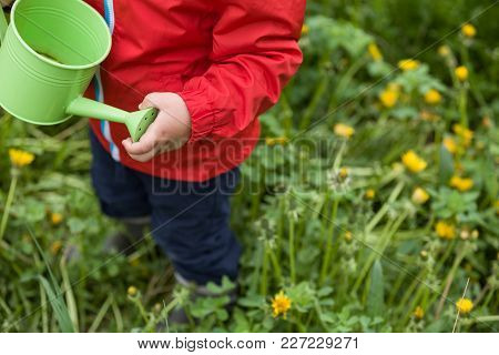 Top View On A Little Toddler In Red Jacket Standing On The Green Grass And Going To Water Dandelions