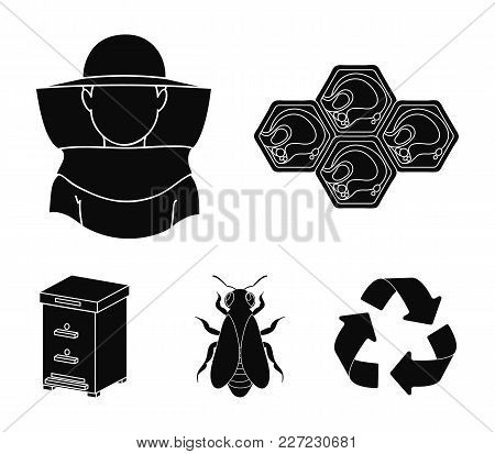 The Bee, The Bee-keeper In The Mask, The Honeycomb Of The Honey.apiary Set Collection Icons In Black