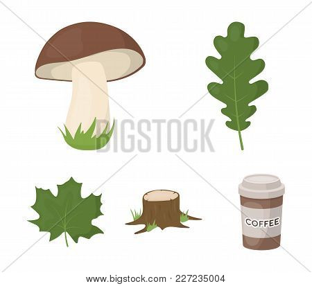 Oak Leaf, Mushroom, Stump, Maple Leaf.forest Set Collection Icons In Cartoon Style Vector Symbol Sto