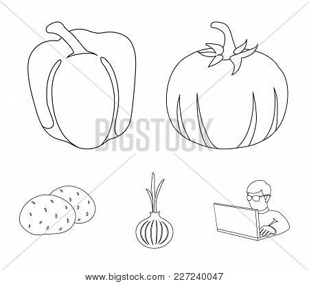 Yellow Pumpkin, Sweet Red Pepper, Onion Bitter, Potatoes. Vegetables Set Collection Icons In Outline