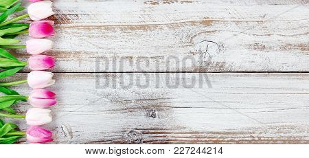 Pink Tulips Forming Left Border On White Aged Wooden Boards