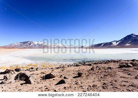 Laguna Blanca Landscape,bolivia. Beautiful Bolivian Panorama.white Lagoon And Licancabur Volcano