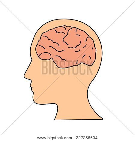 Brain Or Mind Side View Inside Head Line Art Vector Icon For Medical Apps And Websites. Illustration