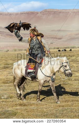 SAGSAY, MONGOLIA - SEP 28, 2017: Berkutchi (Eagle Hunter) on the horse while hunting to the hare with a golden eagles on his arms in the mountains of Bayan-Olgii aimag.