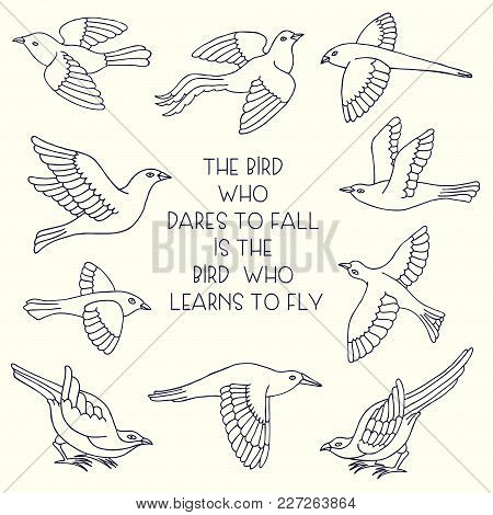 Set Of Hand Drawn Ornate Cartoon Birds. Beautiful Ink Animal Vector Illustration Isolated On A White