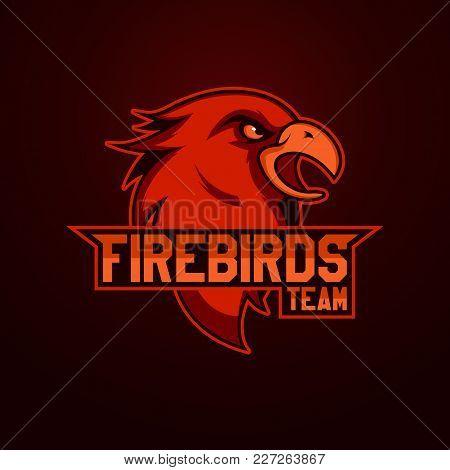 Modern Professional Logo For Sport Team. Firebird Mascot. Firebirdss, Vector Symbol On A Light Backg