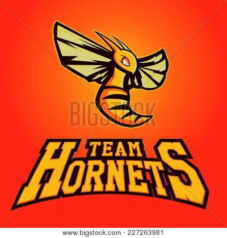 Modern Professional Logo For Sport Team. Hornet Mascot. Hornets, Vector Symbol On A Light Background