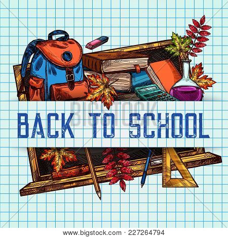Back To School Poster Of Sketch Lesson Stationery, Book, Pen Or Pencil And Autumn Maple Or Rowan Lea