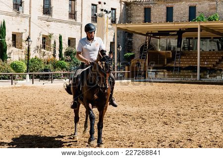 Cordoba, Spain - April 12, 2017: Horse Rider Riding A Brown Andalusian Horse Also Known As Pure Span