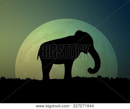 Bright Moon In The Night. Silhouette Black Elephant Vector Illustration. Beautiful Sky, Green And Bl