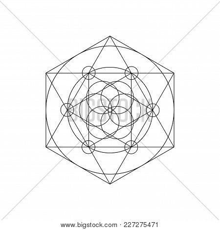 Vector Sacred Geometry Symbols With Triangle, Hexagon, Circle And Floral Motif. Mystical Geometry Sy