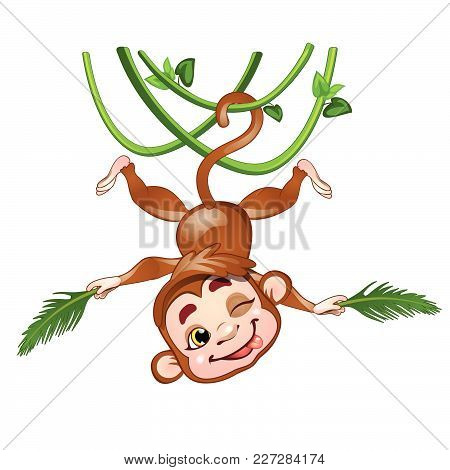 Funny Monkey Hanging On A Vine Upside Down. Vector.