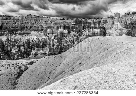 Hoodoos in Bryce Canyon National Park, Utah, USA. Bacl and white