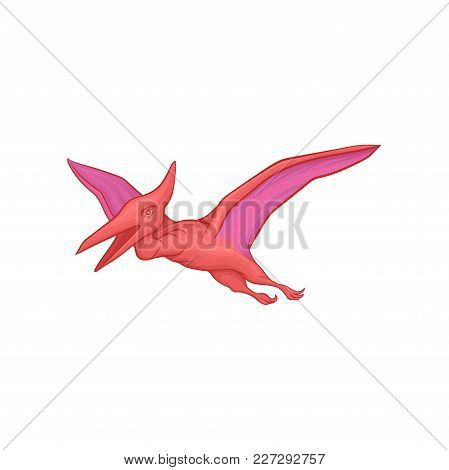 Pink Pterodactyl In Flying Action. Cartoon Prehistoric Dinosaur Character With Big Wings. Ancient Ju