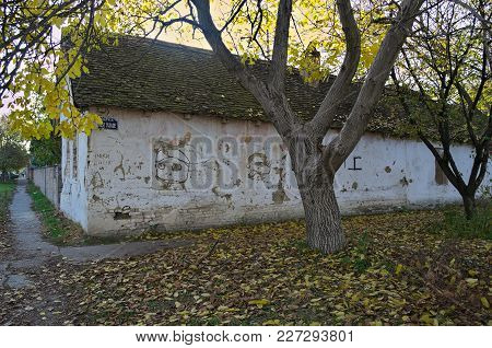 Old Abandoned House At Crossroads, And Trees With Fallen Dry Leaves Around