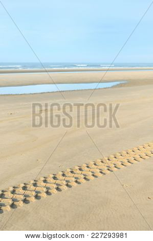 Landscape in Holland at the North sea with beach and seagulls