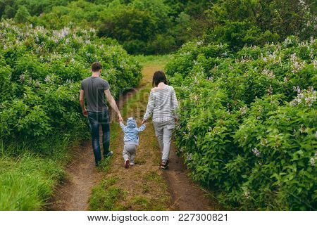 Man, Woman Walking On Nature Bush Background Holding Hands Little Cute Child Baby Boy. Mother, Fathe