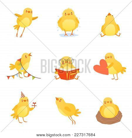 Cartoon Set Of Cute Chicken In Various Situations. Trying To Flight Up, Reading, Sleeping In Nest, S