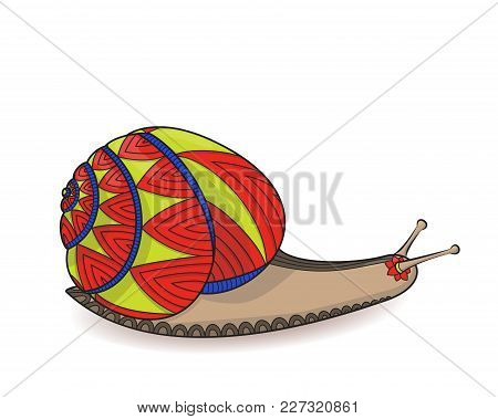Cute Snail Red And Yellow Vector Illustration. Closeup Of Invertebrates Molluscs. Wild Life Zen Tang