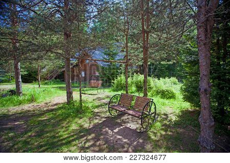 The Well-groomed Territory In The Pine Forest With Benches And Rural  Wooden House