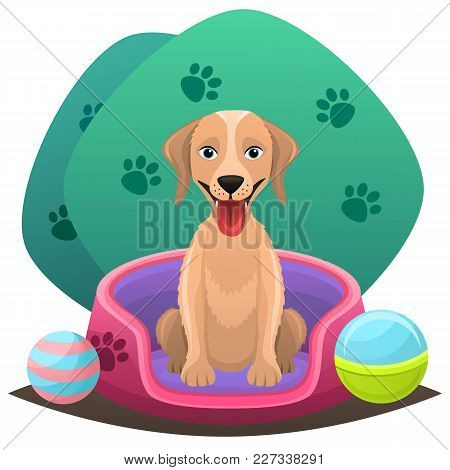 Pet Shop Concept. Animal Grooming Salon Illustration.dog Sitting In A Foam Bed With Toys, Balls Arou