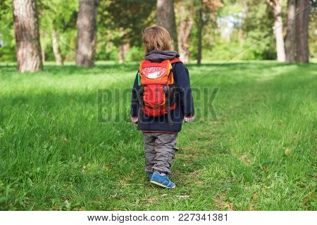 Little Boy Child Walking In The Park