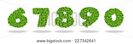 Numeral From The Leaves Of The Clover. Numeral 6-0. For The Design Of St. Patricks Day. Advertising,