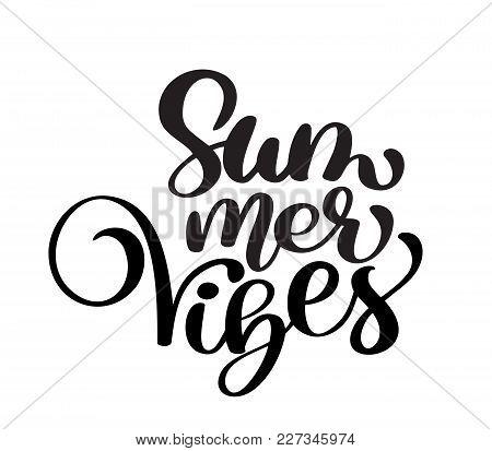 Hand Drawn Summer Vibes Lettering Vector Logo Illusrtation, Modern Calligraphy Lettering On White. V