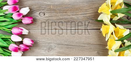 Pink Tulips And Yellow Daffodil Flowers On Each Side Of Weathered Wooden Boards