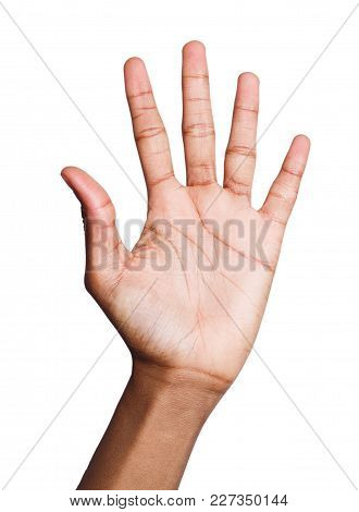 Black Female Hand Shows Number Five Isolated. Counting Gesturing, Enumeration, White Background