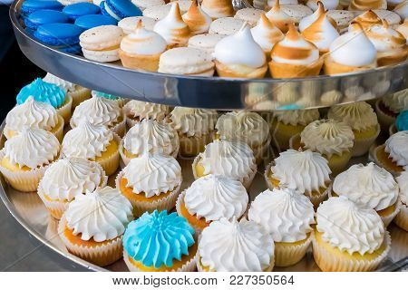 Blue And White Soft Cupcakes On A Tray
