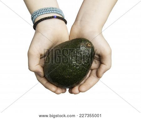 Close Up Of Child Hands Holding An Avocado Isolated On White With Clipping Path At All Sizes.