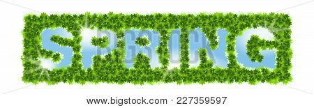 Inscription Spring. Letters In A Leaf Lumens On A Heavenly Background With The Sunlight. Vector Cont