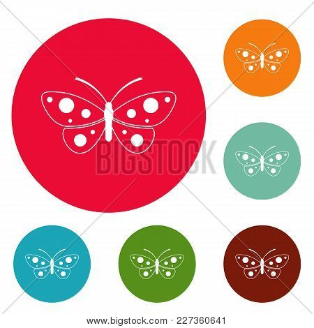 Butterfly Icons Circle Set Vector Isolated On White Background