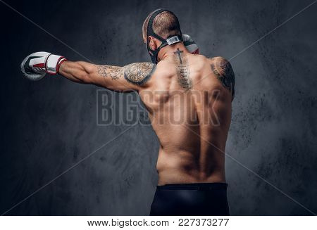 Studio Portrait Of Shirtless, Tattooed Fighter Male Over Grey Vignette Background.