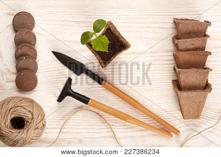 Gardening tools, peat tablets and pots and young seedlings on a wooden background. Concept of spring gardening. Top view.
