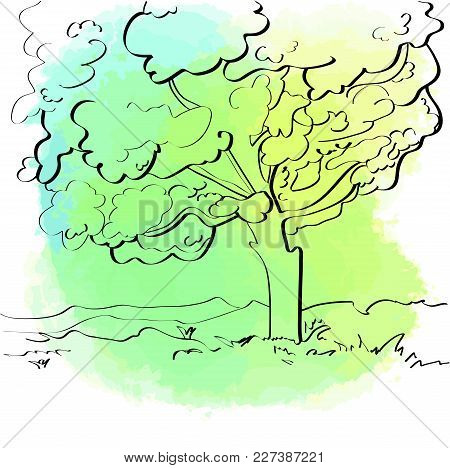 Green Tree. Bright Aquarelle Background. Green Tree. Human Silhouette. Vector Icon For Eco Design