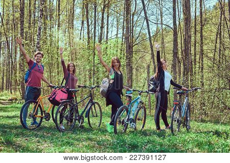 Active Friends Walk With Bike At Forest In Spring.