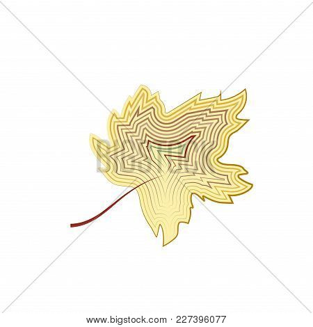 Maple Leaf Is Yellow From Contour Lines, Isolated. Vector Eps10