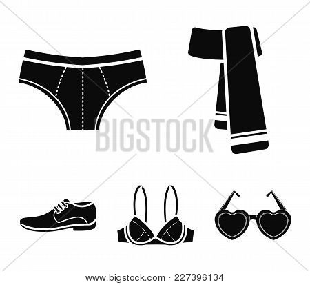 Male Shoes, Bra, Panties, Scarf, Leather. Clothing Set Collection Icons In Black Style Vector Symbol