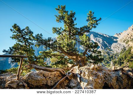 View Of Samaria Gorge In Central Crete, Greece