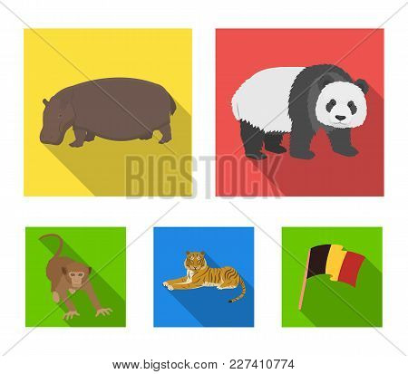 Bamboo Bear, Hippopotamus, Wild Animal Tiger, Monkey . Wild Animal Set Collection Icons In Flat Styl