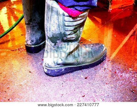 Dirty Rubber Boots On Bloddy Water Floor. Fish Slaughterhouse Or Butchery . Marble Floor And Ground